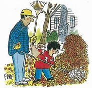 Yard Waste Collection Ends November 30th