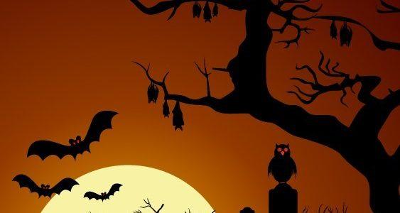 Adult Halloween Costume & Dance Sat 11/2/2019 7-11pm